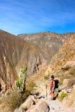Il canyon di Colca immagine stock libera da diritti