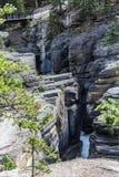 Il canyon di Mistaya immagine stock