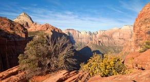 Il canyon di Zion trascura Immagini Stock