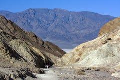 Il canyon dorato Fotografia Stock