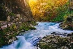 Il canyon famoso con i picchietti di legno, sanguinati, Triglav, Slovenia, Europa della gola di Vintgar Immagine Stock Libera da Diritti