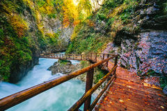 Il canyon famoso della gola di Vintgar con i picchietti di legno fotografie stock