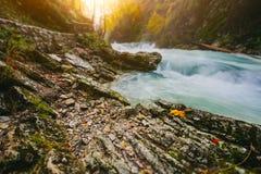 Il canyon famoso della gola di Vintgar, sanguinato, Triglav, Slovenia, Europa Immagine Stock Libera da Diritti