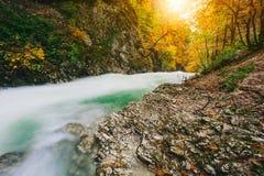 Il canyon famoso della gola di Vintgar, sanguinato, Triglav, Slovenia, Europa Fotografia Stock