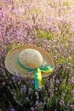 Il cappello della donna nel giacimento della lavanda nel tramonto immagine stock