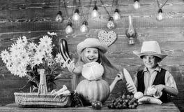 Il cappello di usura del ragazzo della ragazza dei bambini celebra lo stile rustico di festival del raccolto Celebri la festa del fotografie stock libere da diritti