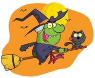 Il carattere harrison ha guidato un broomstick con un gatto Fotografia Stock Libera da Diritti