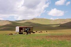 Il caravan asiatico degli agricoltori nel prato dell'Asia centrale con cielo blu si appanna Immagini Stock Libere da Diritti