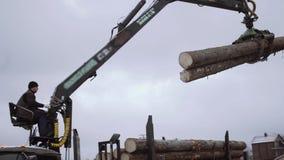 Il caricatore meccanico dell'artiglio scarica i ceppi di legno dal camion pesante alla fabbrica della segheria stock footage