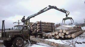 Il caricatore pesante del braccio scarica i ceppi di legno dal camion pesante alla funzione della segheria stock footage