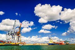 Il carico cranes in porto di Anversa nel Belgio Fotografia Stock Libera da Diritti