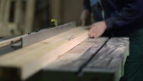 Il carpentiere che lavora ad elettrico ha visto i taglieri video d archivio