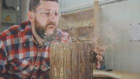 Il carpentiere dell'uomo in una camicia con una barba soffia i trucioli nell'officina Immagine Stock Libera da Diritti