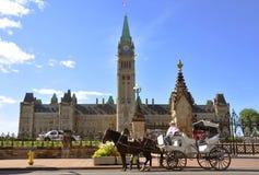 Il carrello trainato da cavalli fa un giro di nella costruzione del Parlamento Fotografia Stock
