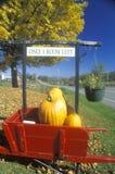 Il carretto rosso ha riempito di zucche fuori del motel in autunno, l'itinerario 100, VT Fotografia Stock Libera da Diritti
