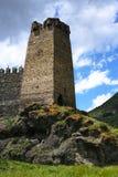 Il castello Fotografie Stock Libere da Diritti