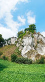 Il castello dei padri di Ojcowie Fotografia Stock Libera da Diritti
