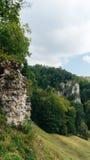Il castello dei padri di Ojcowie Fotografia Stock