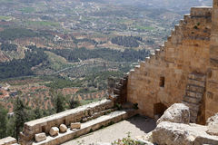 Il castello del ayyubid di Ajloun in Giordania del Nord, costruito nel XII secolo, Medio Oriente fotografia stock libera da diritti
