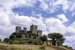 Il castello del Rio di Almodovar nella provincia di Cordova, Andalusia fotografie stock