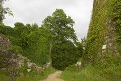 Il castello di Dorneck è un castello nel comune di Dornach Immagine Stock