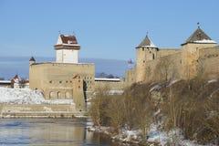 Il castello di Hermann e la fortezza di Ivangorod si elevano un giorno di inverno Fotografia Stock Libera da Diritti