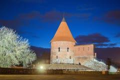 Castello di Kaunas fotografia stock libera da diritti