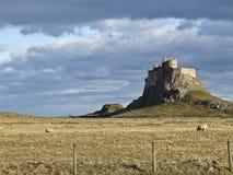 Il castello di Lindisfarne Fotografie Stock Libere da Diritti