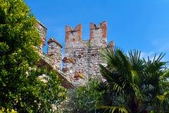Il castello e gli alberi Fotografia Stock