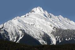Il castello torreggia su montagna Fotografie Stock