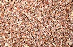 Il catechu della noce di betel o dell'areca del taglio Immagine Stock