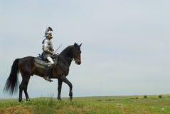 Il cavaliere Fotografia Stock