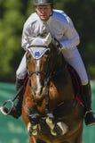 Il cavaliere del cavallo salta il Equestrian immagini stock