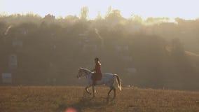 Il cavaliere della ragazza guida un cavallo che scuote la sua testa e che scuote la sua coda Movimento lento archivi video