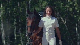 Il cavaliere in un vestito bianco conduce il cavallo dalle redini Cavaliere femminile video d archivio