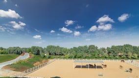 Il cavallo arabo esegue il recinto chiuso interno nel hyperlapse del timelapse del deserto della polvere, UAE immagini stock
