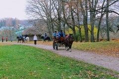 Il cavallo cammina nel parco nella proprietà del conteggio Leo Tolstoy in Yasnaya Polyana nell'ottobre 2017 fotografie stock