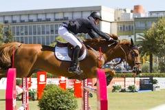 Il cavallo che salta - Pedro Veniss Immagini Stock Libere da Diritti