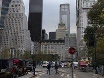 Il cavallo ed i carrelli aspettano i clienti al Central Park New York Fotografia Stock Libera da Diritti