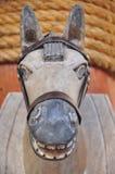 il cavallo fa da legno nella località di soggiorno Immagine Stock Libera da Diritti