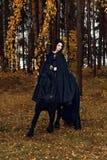 Il cavallo frisone resta su un ginocchio mentre si prepara con una giovane donna in un abbigliamento gotico di sera nera che guid Immagine Stock