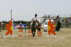 Il cavallo salta Immagini Stock Libere da Diritti