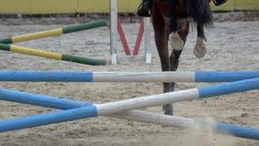 Il cavallo salta sopra l'ostacolo Movimento lento Vista posteriore video d archivio