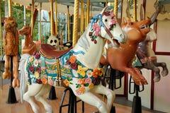 Il cavallo su un allegro va giro Immagini Stock