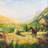 Il cavallo sul pendio di collina al sole Fotografia Stock Libera da Diritti