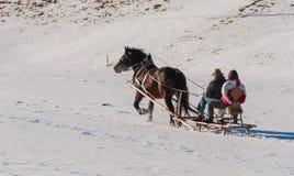 Il cavallo tira una slitta Immagini Stock Libere da Diritti
