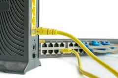 Il cavo della rete si collega al router Immagine Stock Libera da Diritti
