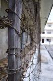 Il cavo di Barb ha avvolto un recinto Immagini Stock Libere da Diritti