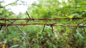 Il cavo di recinzione vicino alla foresta verde immagine stock libera da diritti