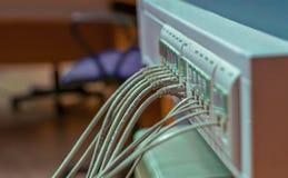 Il cavo ed i connettori si sono collegati ai connettori del server Fotografia Stock Libera da Diritti